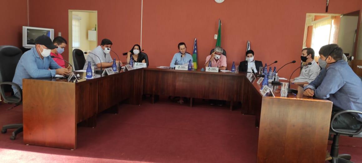 Parlamentares apreciando pautas no plenário da Câmara Municipal de Davinópolis (Reprodução)
